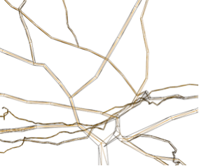 NeuroLOTs
